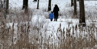A woman and child take a walk at the Cleveland MetroParks North Chagrin Reservation Tuesday, Feb. 4, 2014, in Willoughby Hills, Ohio. Winter-weary Ohioans are bracing for what could be the biggest snowstorm of the season so far. Forecasters say most of the state could end up with 6 to 10 inches of snow on the ground by the time it's over. (AP Photo/Tony Dejak)